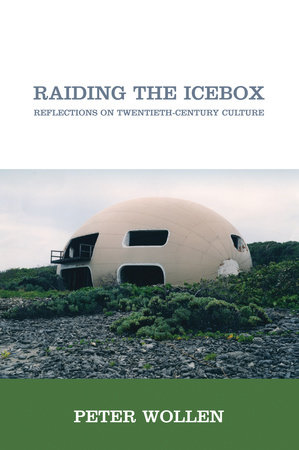 Raiding the Icebox by Peter Wollen