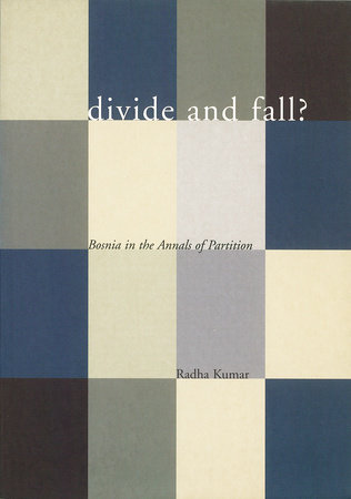 Divide and Fall? by Radha Kumar