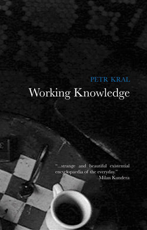 Working Knowledge by Petr Kral