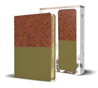Santa Biblia RVR 1960 - Letra grande, imitación piel verde/marrón, imágenes de Tierra Santa / Spanish Holy Bible RVR 1960 - Large Print