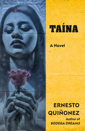 Taína Book Cover Picture