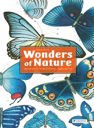 Wonders of Nature by Florence Guiraud