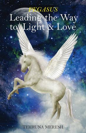 Pegasus by Tehruna Meresh