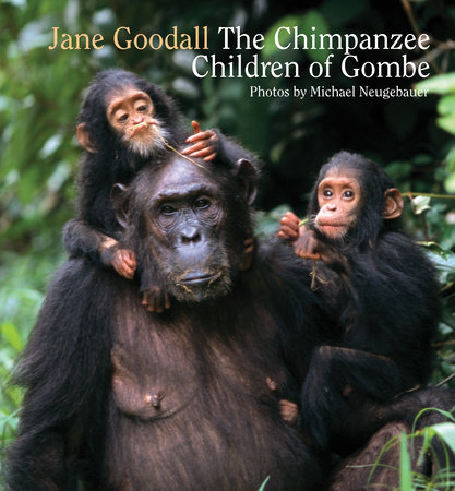 Chimpanzee Children of Gombe by Jane Goodall